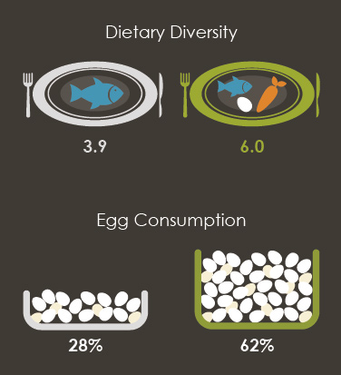Illustrations showing Dietary Diversity and Egg Consumption.