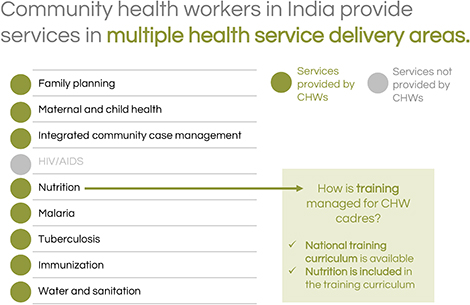 Community health workers in India provide services in multiple health service delivery areas.