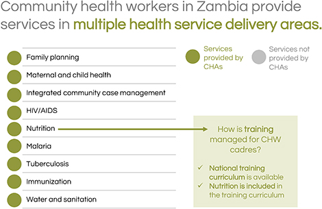 Community health workers in Zambia provide services in multiple health service delivery areas.