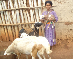 Photo of a woman holding and standing with livestock.