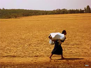 Photo of a person carrying something through a large desolate field.