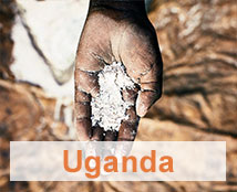 A hand contains flour in Uganda.