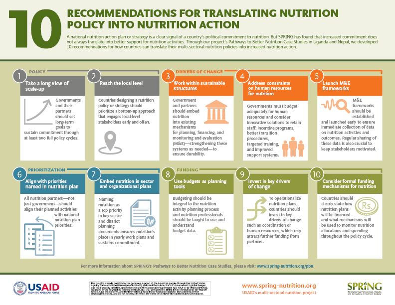 Recommendations include: 1. Take Long View of Scale Up, 2. Reach the Lowest Level, 3. Build Sustainable Structures, 4. Add Human Resources for Nutrition, 5. Launch M&E Frameworks, 6. Align with NNAP, 7. Embed Nutrition in Sector & Organizational Plans, 8. Use Budgets as Planning Tools, 9. Invest in Key Drivers of Change, 10. Consider Formal Funding Mechanisms for Nutrition.