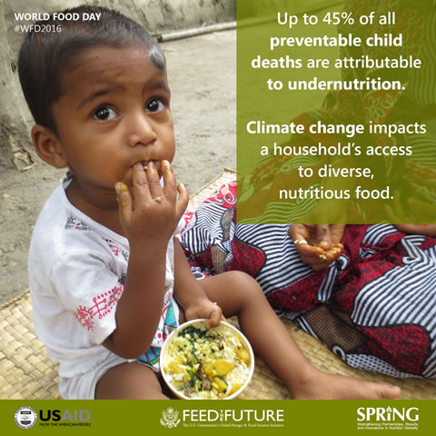 World Food Day 2016 Facts - Undernutrition