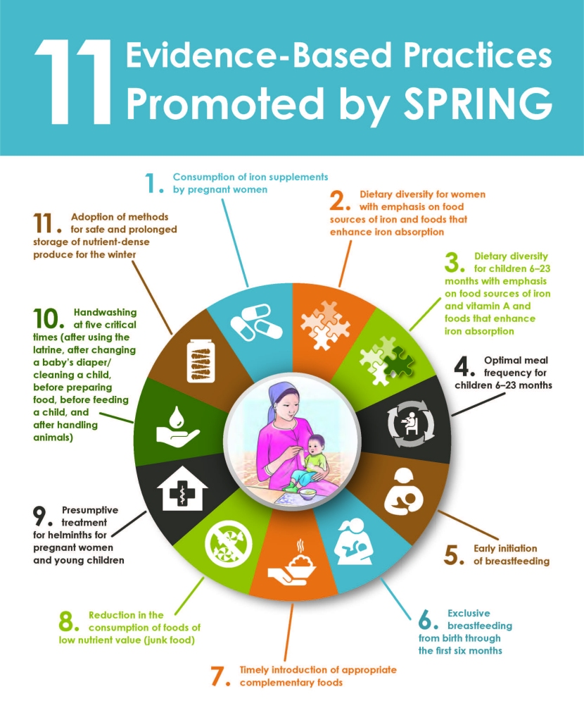 Circular diagram showing 11 Evidence-based practices promoted by SPRING - View PDF for full text.