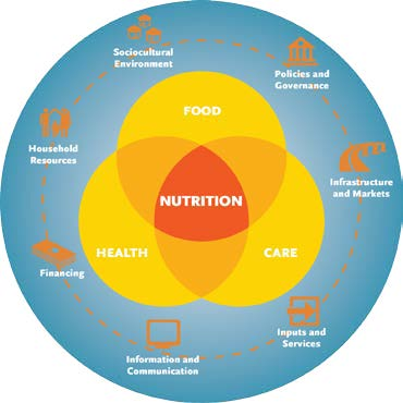 Figure 1: Venn diagram showing health, food, and care interrsecting at nutrition.