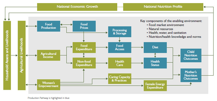 Steps Toward Improved Nutrition: The Food Production Pathway