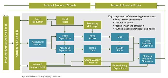 Steps Toward Improved Nutrition: The Agricultural Income Pathway