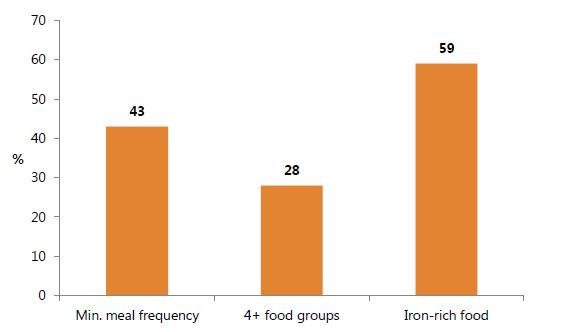 Figure 8. Selected Complementary Feeding Indicators among Children 6–23 Months, 2014