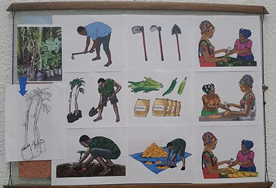 Image of a number of different illustrations depicting people, plants, and farming.