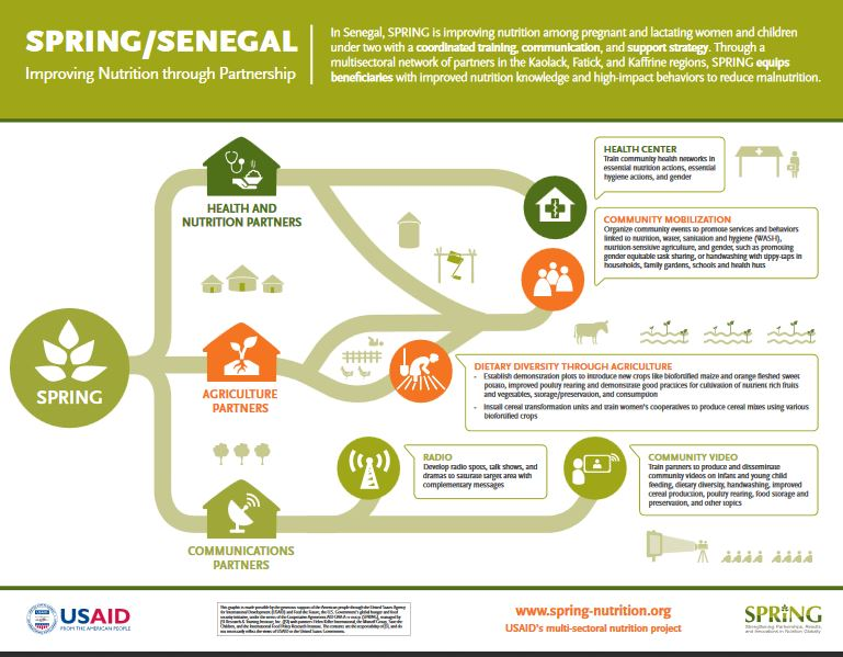 Figure 1. SPRING/Senegal Life of Project Infographic