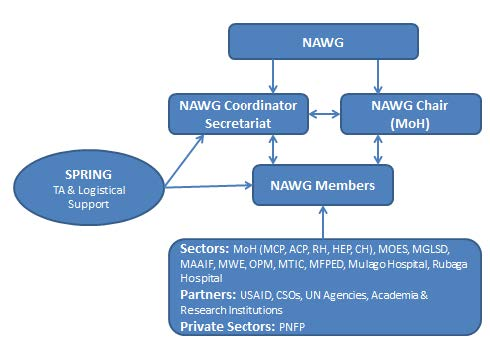 "Figure 2: National Anemia Working Group Coordination Structure. ""Members were nominated by the permanent secretaries of the key sectors (Figure 2). The Commissioner of the Community Health Department, under the MoH, accepted chairmanship of the group. The Senior Nutritionist and Micronutrient Coordinator from the Nutrition Division of the MoH formed the Secretariat, in addition to other officials within the Nutrition Division."""