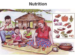 Illustration of a family eating outdoors under Nutrition header