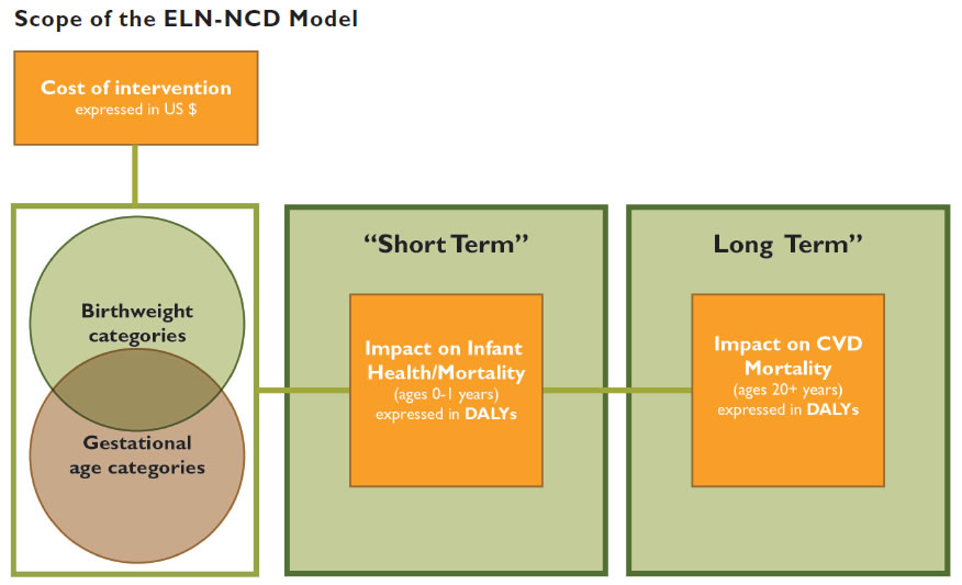 Scope of the ELN-NCD Model