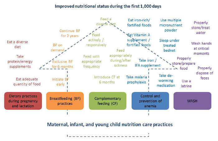 Figure 1. Evidence-Based MIYCN Practices for Improving Nutritional Status