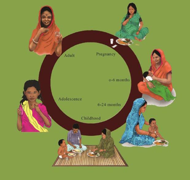 A circle with illustrations of women with her child at various stages. Pregnancy. With a baby of 0-6 months. With a toddler of 6-24 months. Childhood. Adolescense. Adult.