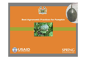 "Page 1 [figure] Coat of arms for Sierra Leone [photos, in center and in upper right] Two different kinds of pumpkin [title] Best Agronomic Practices for Pumpkin [logos] USAID logo: ""USAID: United States Agency [for] International Development. USAID. From the American People"" SPRING logo: ""SPRING. Strengthening Partnerships, Results, and Innovations in Nutrition Globally"""