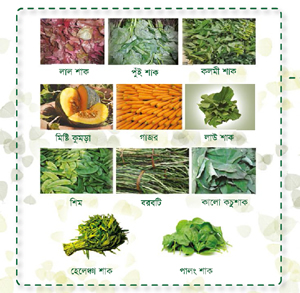 Section of the poster depicting various nutritious plants
