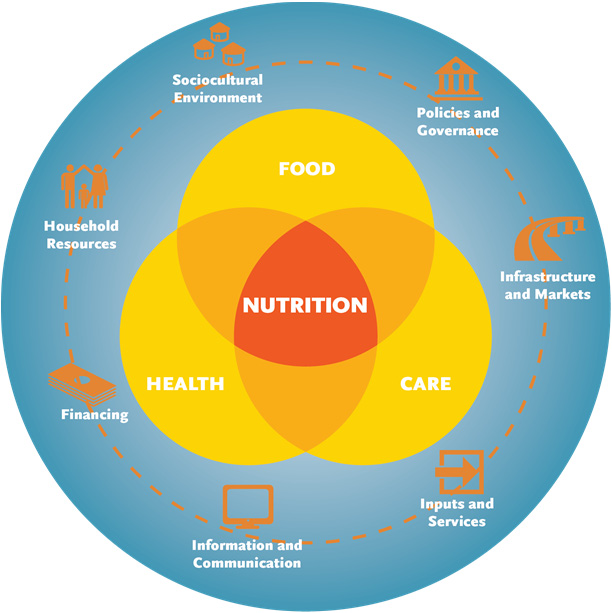 Figure 1. The SPRING Framework for Applying Systems Thinking to Nutrition