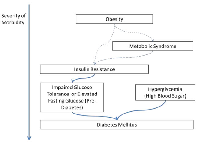 As Remedy to Manage Diabetes Mellitus: A Literature Review