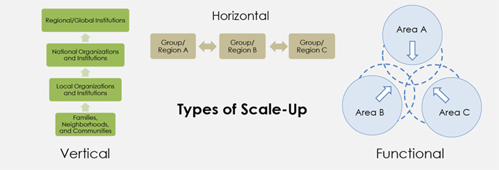 Figure 1. Scale-Up Conceptual Framework