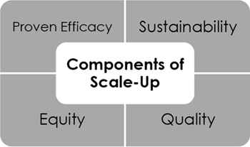 Second part of Figure 1. Scale-Up Conceptual Framework
