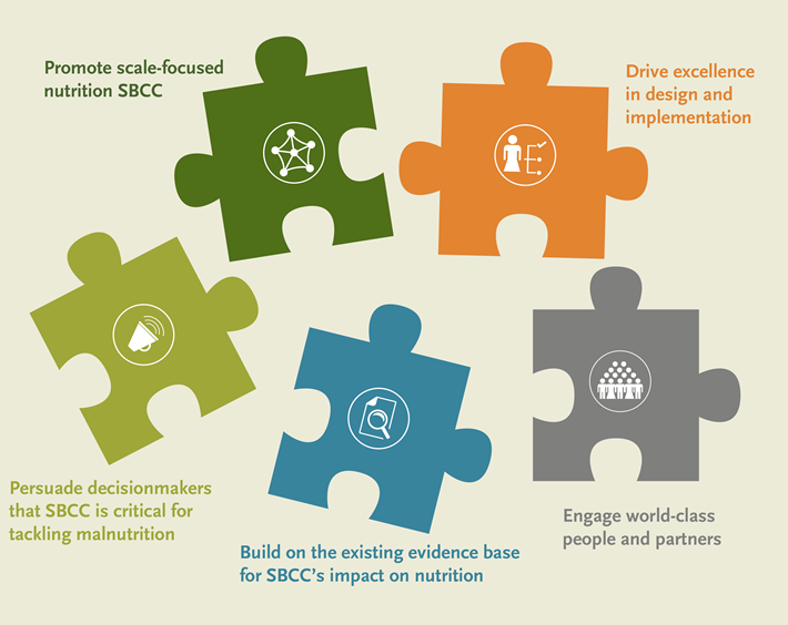 Graphic showing puzzle pieces labeled promote scale-focused nutrition SBC, Dirve excellence in design and implementation, Persuade decision-makers that SBC is critical for tackling malnutrition, build on the existing evidence base for SBC's impact on nutrition, Engage world-class people and partners