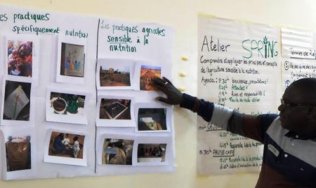 Groups worked together to determine whether images depicting local practices were nutrition-specific or nutrition-sensitive.