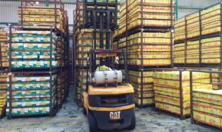 A forklift grabs a palette of boxes and takes them to the loading dock