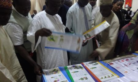 Participants looking through IYCF brochures from SPRING's booth.