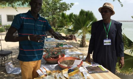 One of SPRING/Senegal's partner CBSPs (community-based service providers) shows agricultural tools SPRING helped train him to produce.