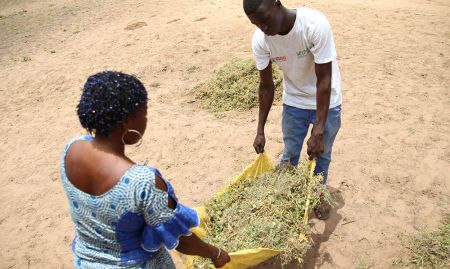 A dynaset-setal member helps a community dispose of waste.