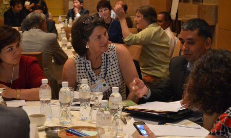 Carolyn Hart and Debendra Adhikari discuss group work on multi-sectoral programming.