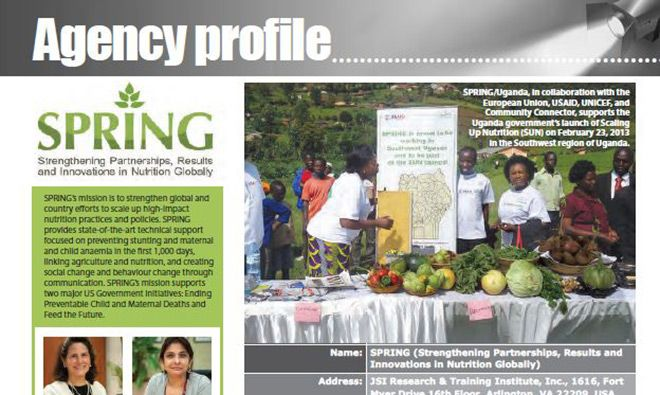 Image of the front page of the article featuring SPRING
