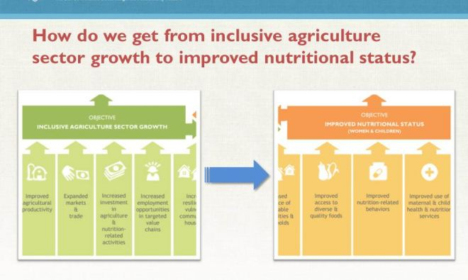 Maximizing Nutrition Impact through Feed the Future