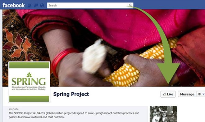 SPRING Project cover image