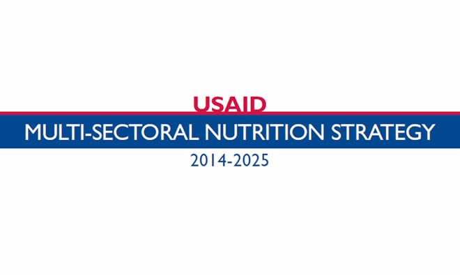 USAID Multisectoral Nutrition Strategy