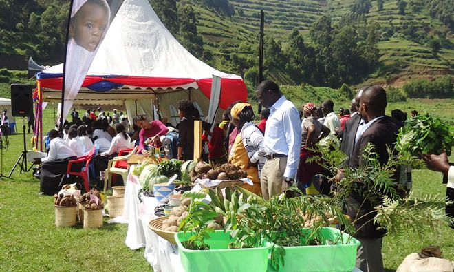 SPRING To Advance Continued Agriculture and Nutrition Learning Agenda