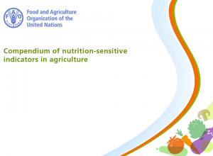 Compendium of Nutrition-Sensitive Indicators in Agriculture