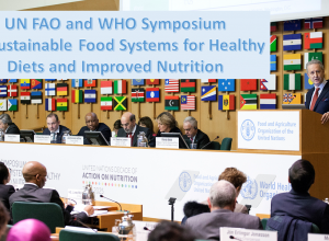 Title slide of the presentation with a picture from the FAO Symposium