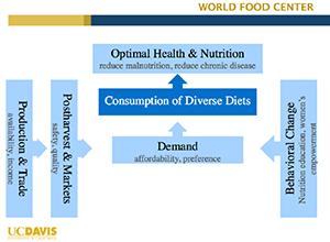 World Food Center Presentation Diagram