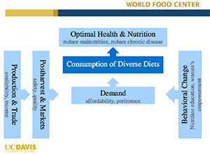 World Food Center Presentation Diagram