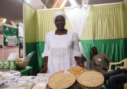SPRING/Senegal partner, Mme Amy Sarr Ndao, shows of high-nutrient, biofortified Obatampa maize.