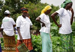 Members of a women's group inspect the state of their community garden.