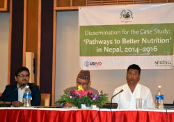 During the final national dissemination event for the PBN Nepal case study, representatives from Achham and Kapilvastu provided their perspectives on the MSNP roll out and study findings, while Dr. Yagya Karki, Former Hon. Member, NPC, presided