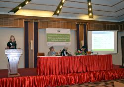 Principal Investigator Amanda Pomeroy-Stevens presents the methods of the PBN Nepal case study alongside the Hon. Member, Former Hon. Member, and Joint Secretary of the National Planning Commission