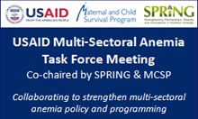Slide from a meeting of the USAID Multi-Sectoral Anemia Task Force
