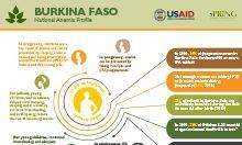 Burkina Faso anemia profile