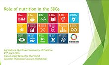 Role of Nutrition in the SDGs cover slide with title