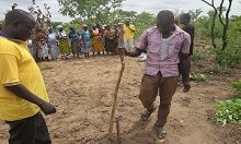Agricultural demonstration on planting groundnuts in rows